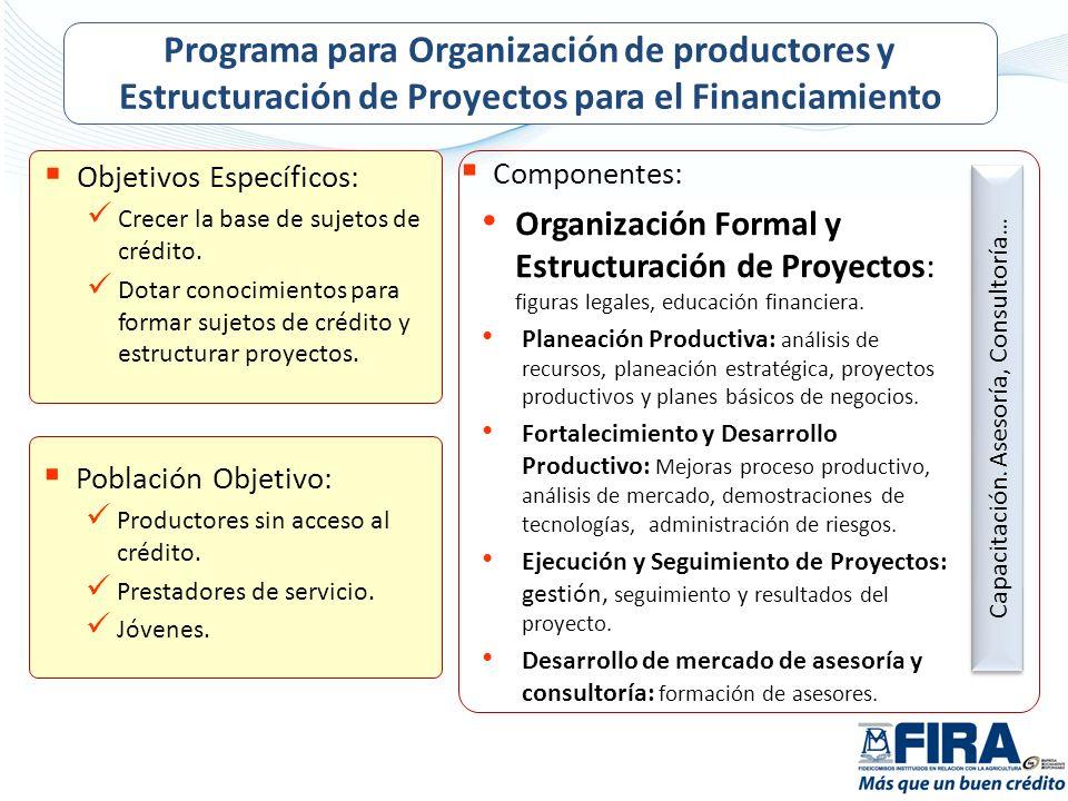 Objetivos Específicos: Crecer la base de sujetos de crédito. Dotar conocimientos para formar sujetos de crédito y estructurar proyectos. Población Obj