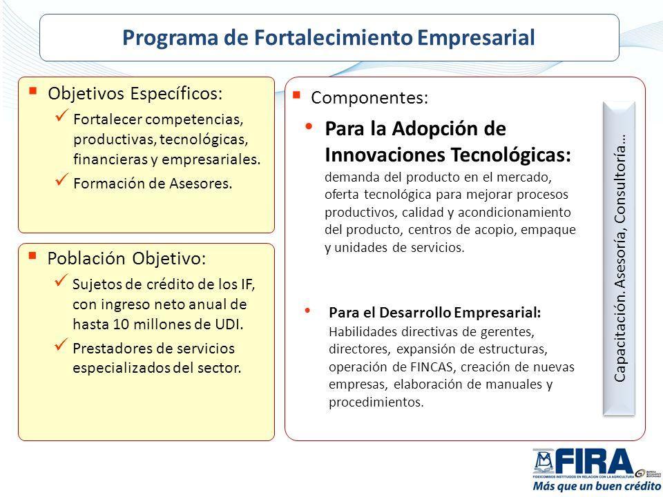 Objetivos Específicos: Fortalecer competencias, productivas, tecnológicas, financieras y empresariales. Formación de Asesores. Población Objetivo: Suj