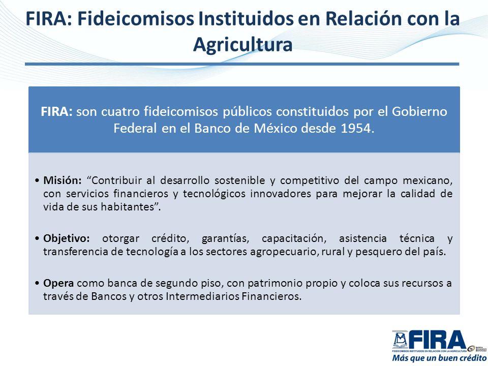 FIRA: Fideicomisos Instituidos en Relación con la Agricultura FIRA: son cuatro fideicomisos públicos constituidos por el Gobierno Federal en el Banco
