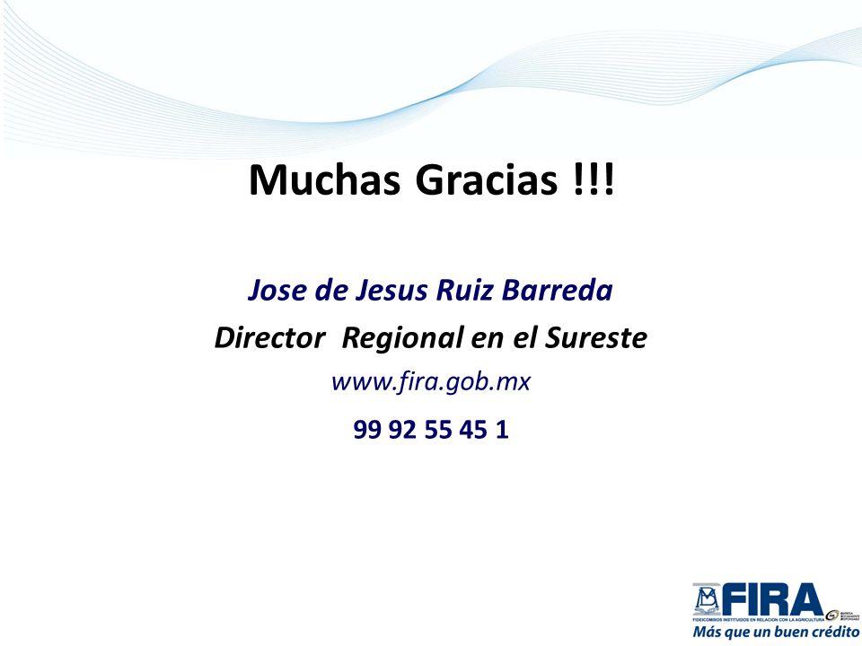 Jose de Jesus Ruiz Barreda Director Regional en el Sureste www.fira.gob.mx 99 92 55 45 1 Muchas Gracias !!!