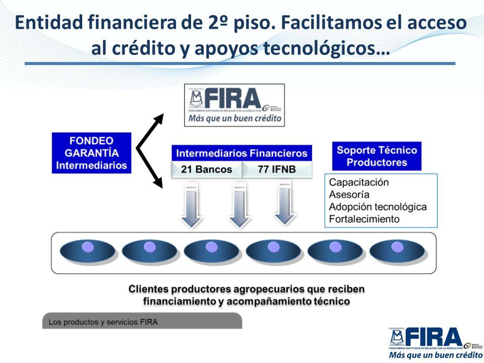 Entidad financiera de 2º piso. Facilitamos el acceso al crédito y apoyos tecnológicos…