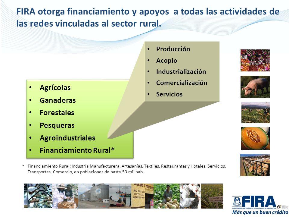Agrícolas Ganaderas Forestales Pesqueras Agroindustriales Financiamiento Rural* Agrícolas Ganaderas Forestales Pesqueras Agroindustriales Financiamien
