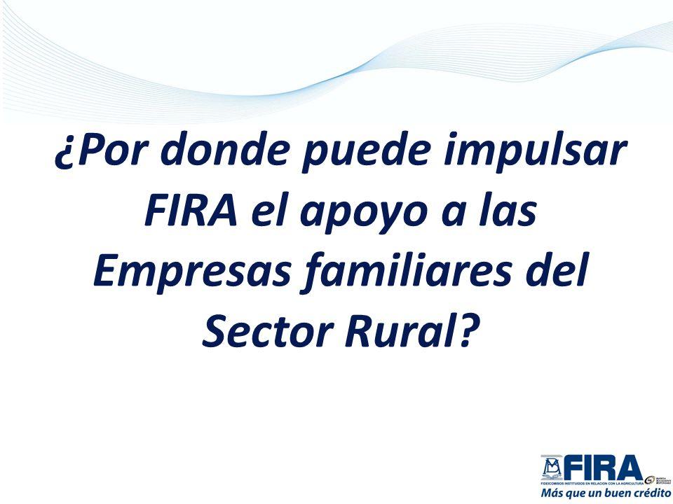 Objetivos Específicos: Fortalecer competencias, productivas, tecnológicas, financieras y empresariales.
