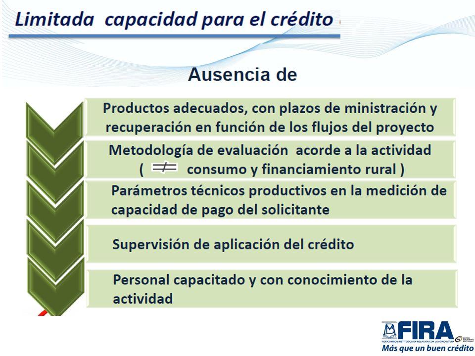 Objetivos Específicos: Integrar a productores y sus empresas en alianzas estratégicas.
