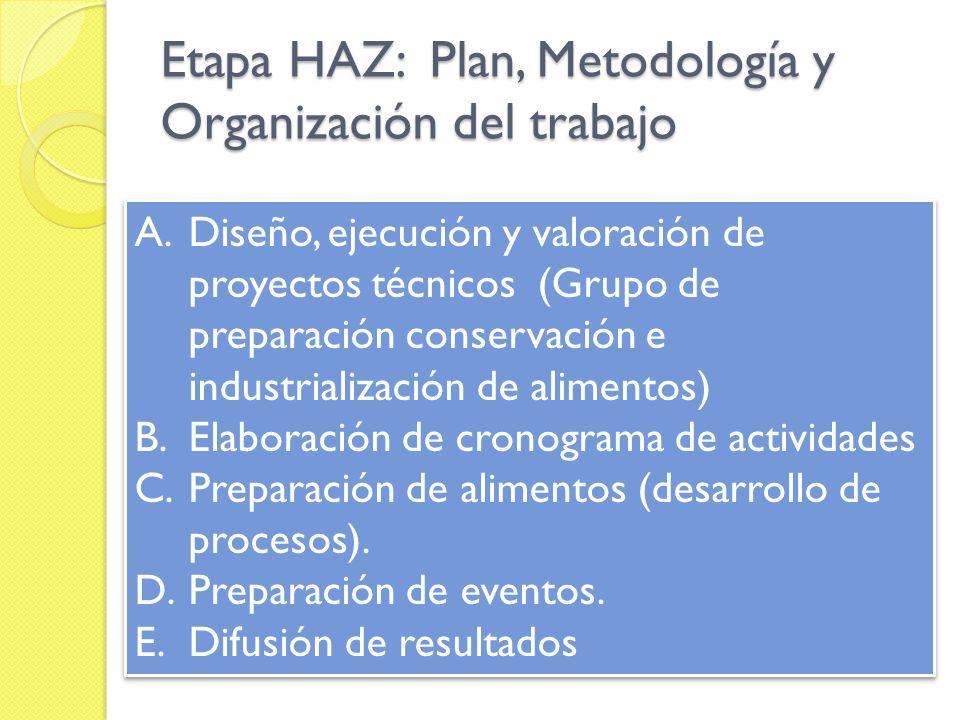 Etapa HAZ: Plan, Metodología y Organización del trabajo A.Diseño, ejecución y valoración de proyectos técnicos (Grupo de preparación conservación e in