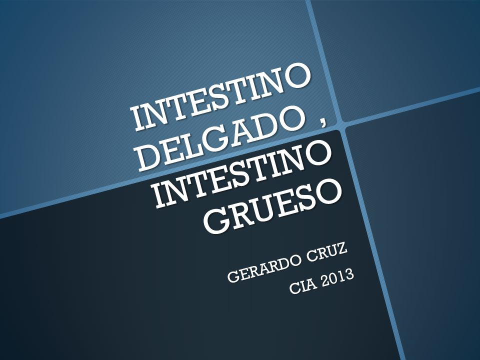 INTESTINO DELGADO, INTESTINO GRUESO GERARDO CRUZ CIA 2013