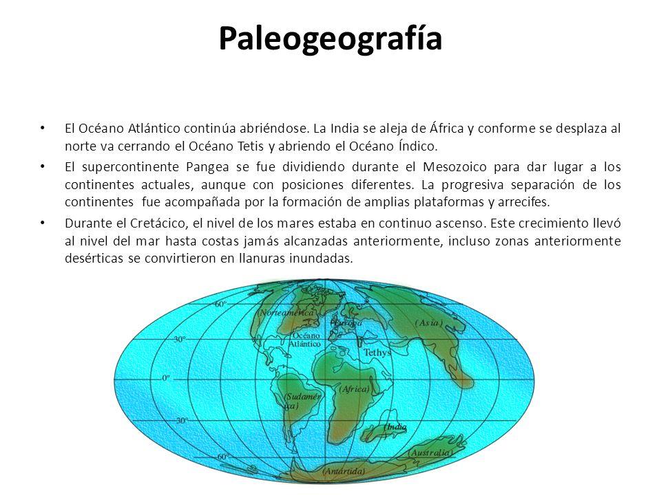 Paleogeografía El Océano Atlántico continúa abriéndose. La India se aleja de África y conforme se desplaza al norte va cerrando el Océano Tetis y abri