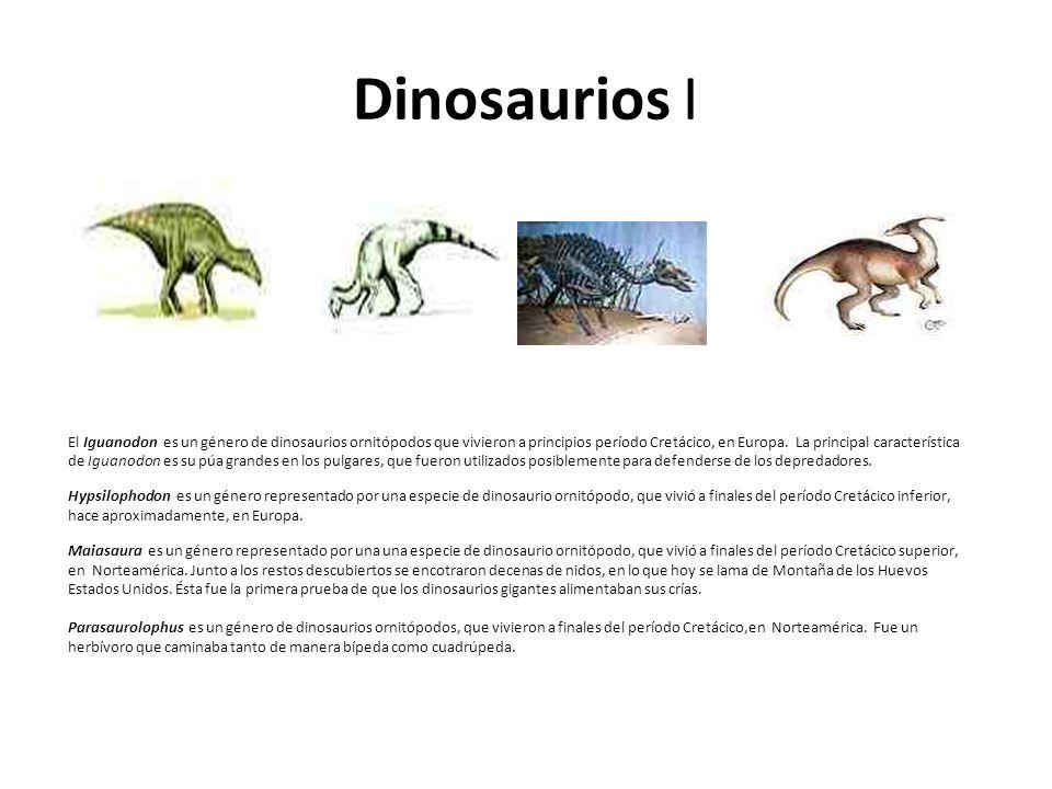 Dinosaurios I El Iguanodon es un género de dinosaurios ornitópodos que vivieron a principios período Cretácico, en Europa. La principal característica