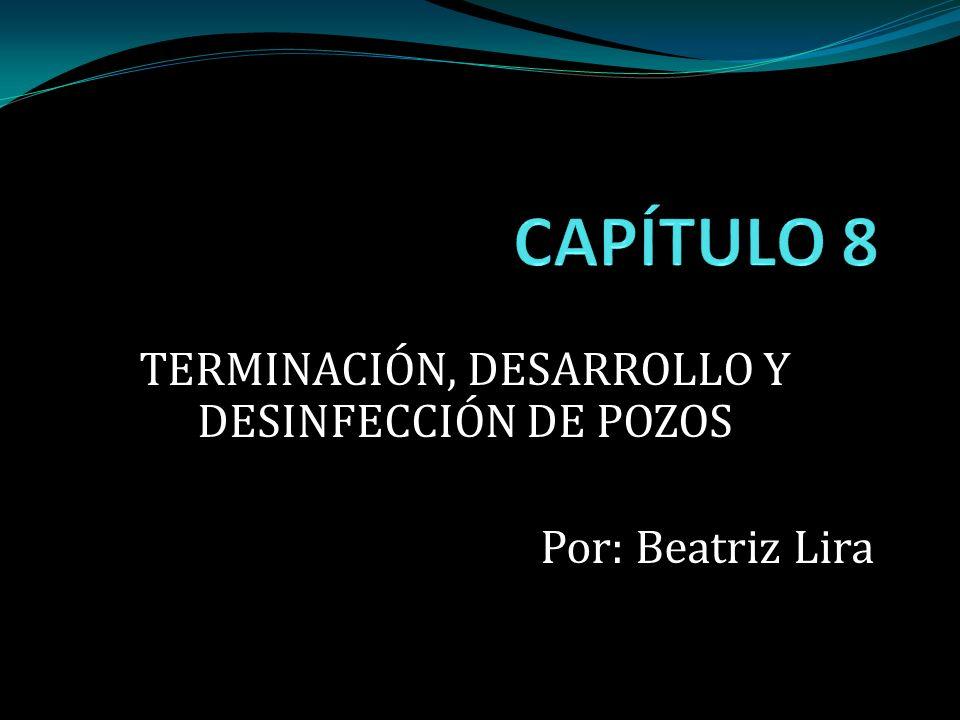 TERMINACIÓN, DESARROLLO Y DESINFECCIÓN DE POZOS Por: Beatriz Lira