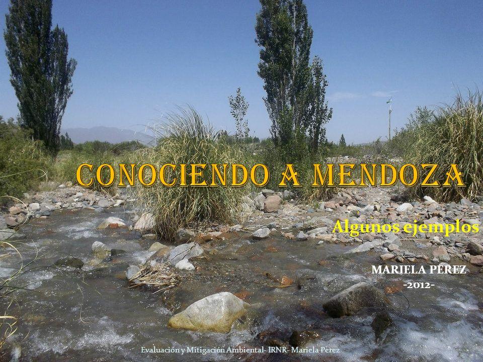 Algunos ejemplos Evaluación y Mitigación Ambiental- IRNR- Mariela Perez MARIELA PEREZ -2012-