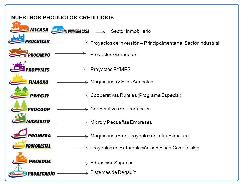 NUESTROS PRODUCTOS CREDITICIOS Sector Inmobiliario Proyectos de Reforestación con Fines Comerciales Maquinarias para Proyectos de Infraestructura Proyectos de Inversión – Principalmente del Sector Industrial Proyectos Ganaderos Proyectos PYMES Maquinarias y Silos Agrícolas Cooperativas Rurales (Programa Especial) Cooperativas de Producción Micro y Pequeñas Empresas Educación Superior Sistemas de Regadío