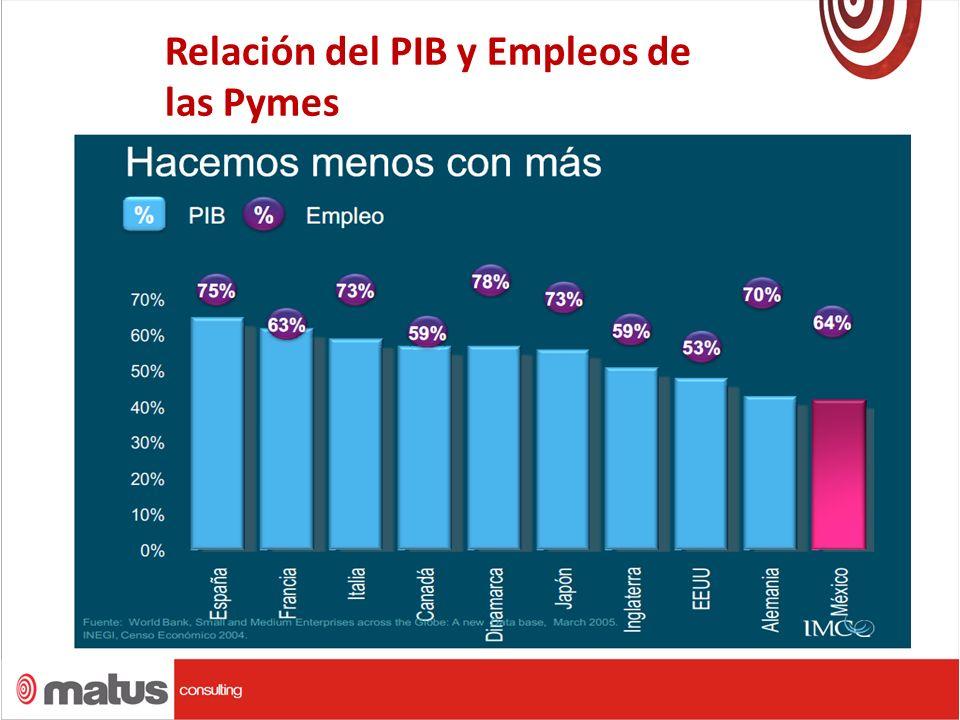 Relación del PIB y Empleos de las Pymes.