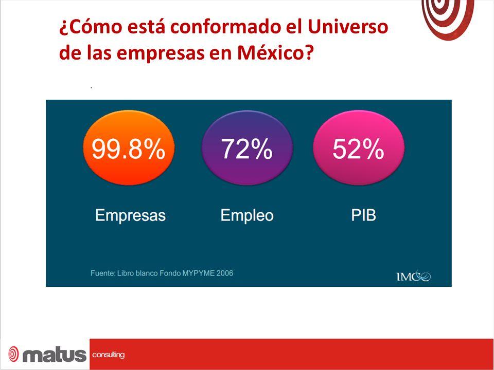 ¿Cómo está conformado el Universo de las empresas en México?.