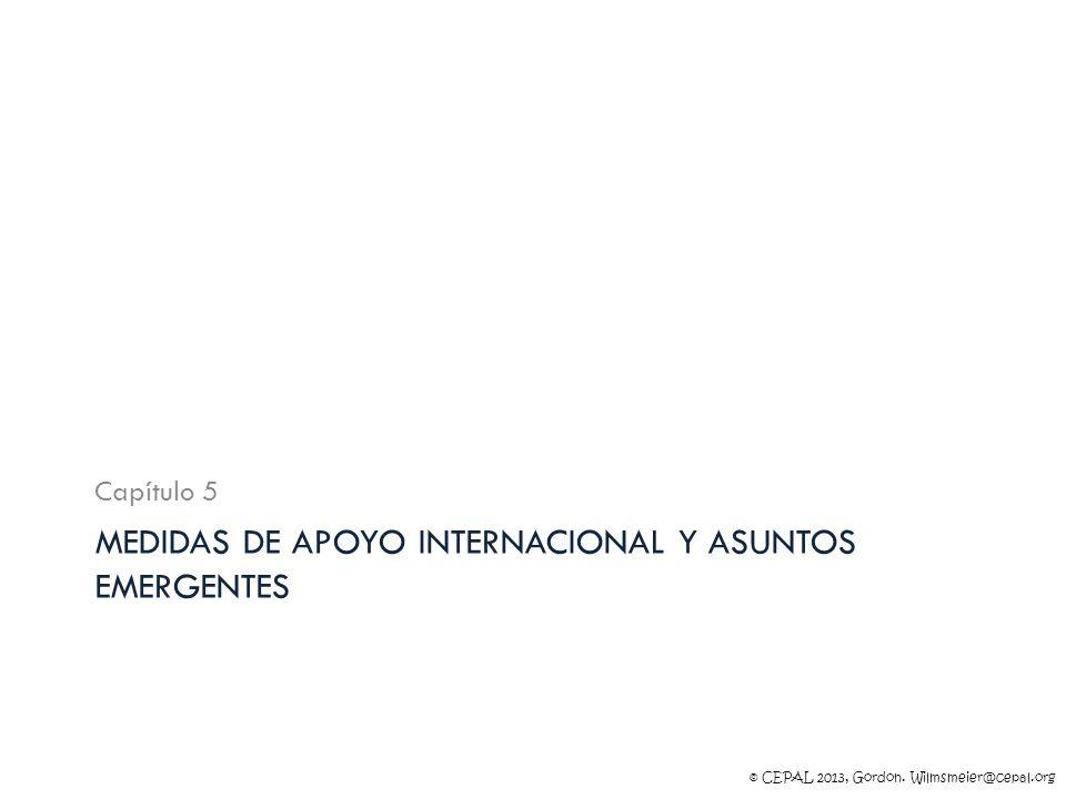 © CEPAL 2013, Gordon. Wilmsmeier@cepal.org MEDIDAS DE APOYO INTERNACIONAL Y ASUNTOS EMERGENTES Capítulo 5