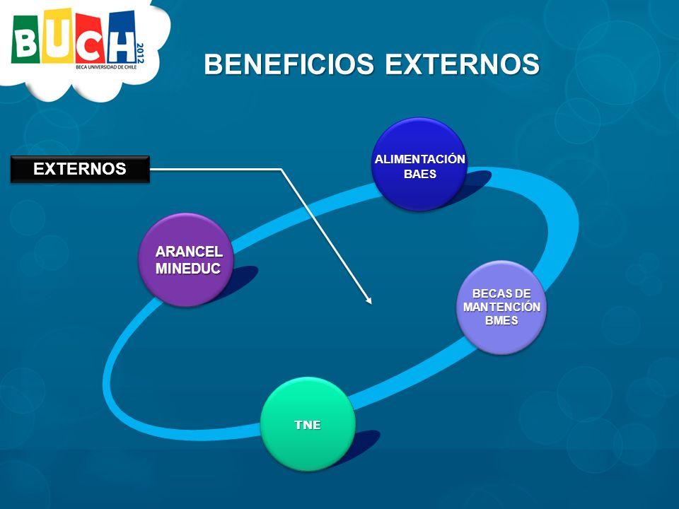 BENEFICIOS EXTERNOS TNE TNE BECAS DE MANTENCIÓNBMES ARANCELMINEDUC ALIMENTACIÓNBAES EXTERNOSEXTERNOS