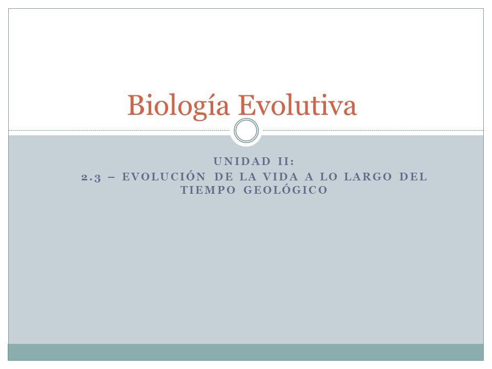 UNIDAD II: 2.3 – EVOLUCIÓN DE LA VIDA A LO LARGO DEL TIEMPO GEOLÓGICO Biología Evolutiva