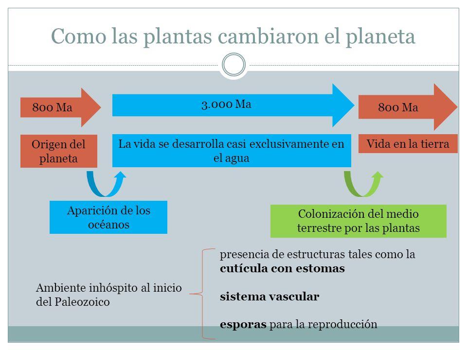 Como las plantas cambiaron el planeta 3.000 Ma 800 Ma La vida se desarrolla casi exclusivamente en el agua Vida en la tierra Colonización del medio te
