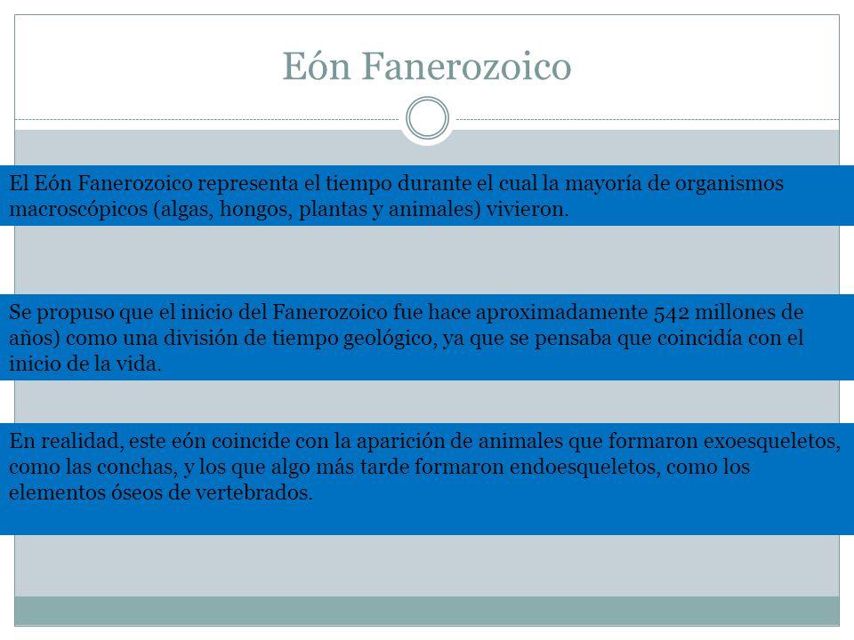 Eón Fanerozoico El Eón Fanerozoico representa el tiempo durante el cual la mayoría de organismos macroscópicos (algas, hongos, plantas y animales) viv