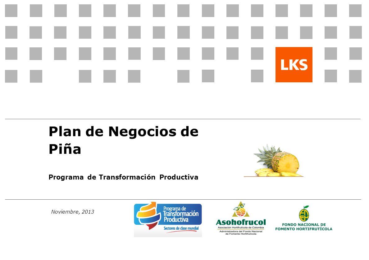 Noviembre, 2013 Plan de Negocios de Piña Programa de Transformación Productiva