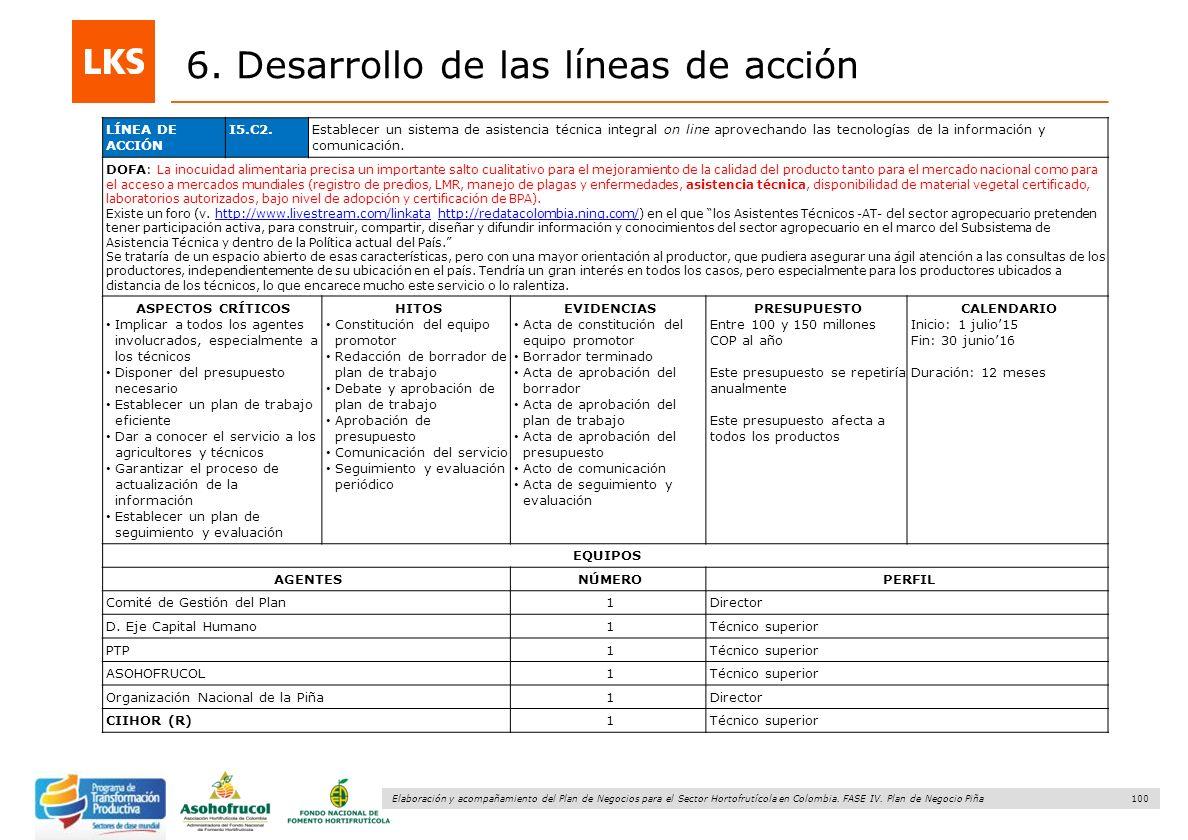 100 Elaboración y acompañamiento del Plan de Negocios para el Sector Hortofrutícola en Colombia. FASE IV. Plan de Negocio Piña 6. Desarrollo de las lí
