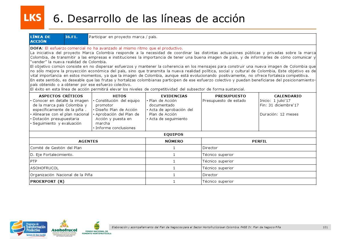 101 Elaboración y acompañamiento del Plan de Negocios para el Sector Hortofrutícola en Colombia. FASE IV. Plan de Negocio Piña 6. Desarrollo de las lí