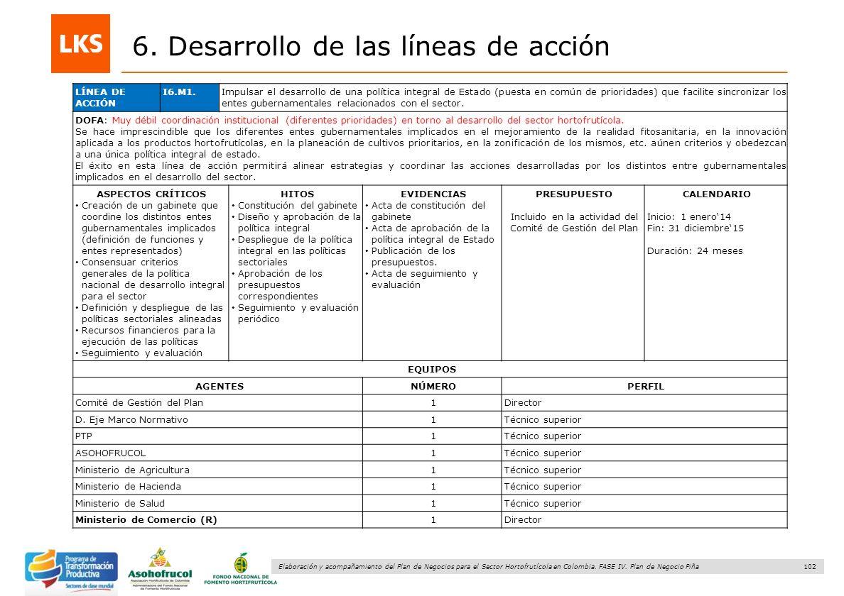 102 Elaboración y acompañamiento del Plan de Negocios para el Sector Hortofrutícola en Colombia. FASE IV. Plan de Negocio Piña 6. Desarrollo de las lí