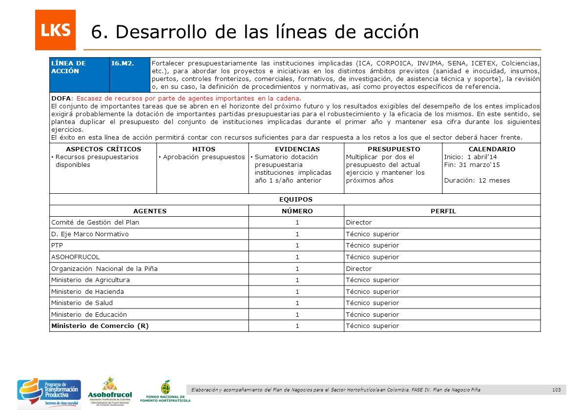 103 Elaboración y acompañamiento del Plan de Negocios para el Sector Hortofrutícola en Colombia. FASE IV. Plan de Negocio Piña 6. Desarrollo de las lí