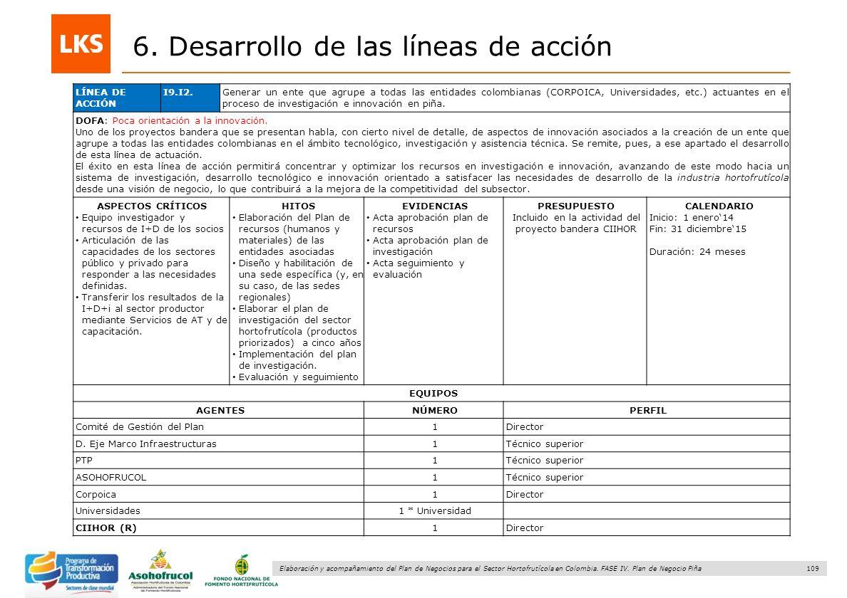 109 Elaboración y acompañamiento del Plan de Negocios para el Sector Hortofrutícola en Colombia. FASE IV. Plan de Negocio Piña 6. Desarrollo de las lí