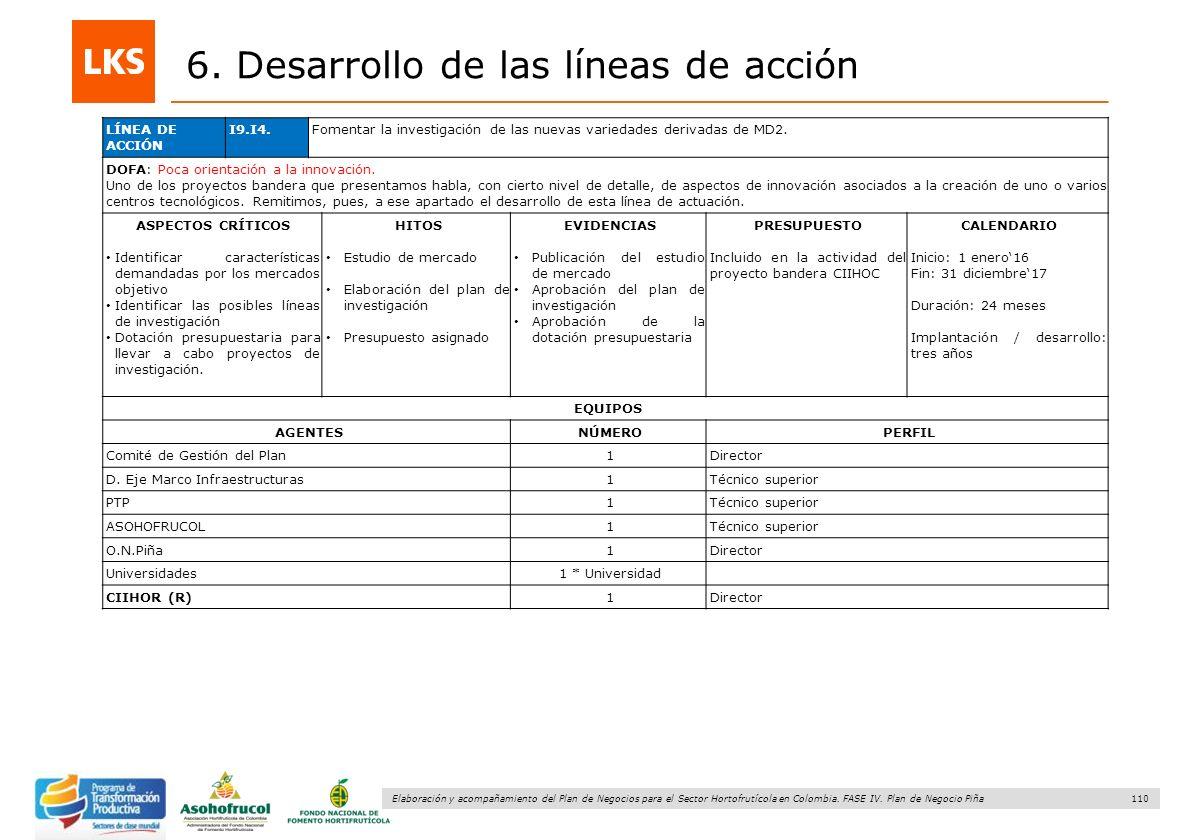 110 Elaboración y acompañamiento del Plan de Negocios para el Sector Hortofrutícola en Colombia. FASE IV. Plan de Negocio Piña 6. Desarrollo de las lí