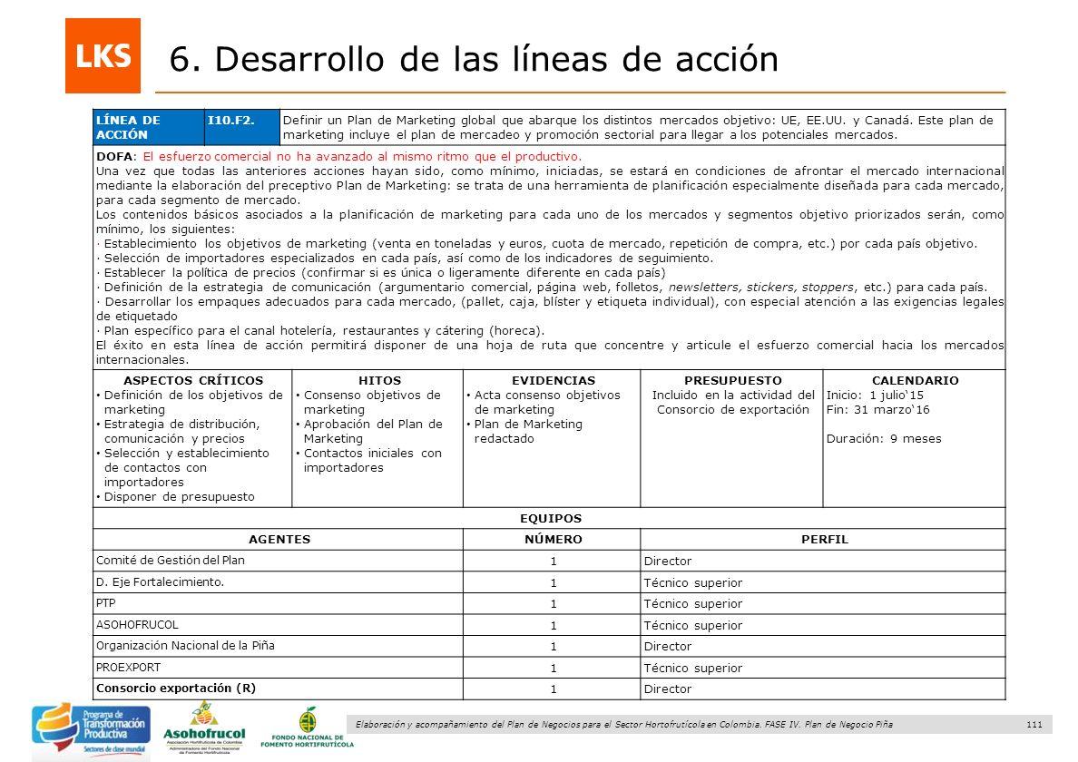 111 Elaboración y acompañamiento del Plan de Negocios para el Sector Hortofrutícola en Colombia. FASE IV. Plan de Negocio Piña 6. Desarrollo de las lí