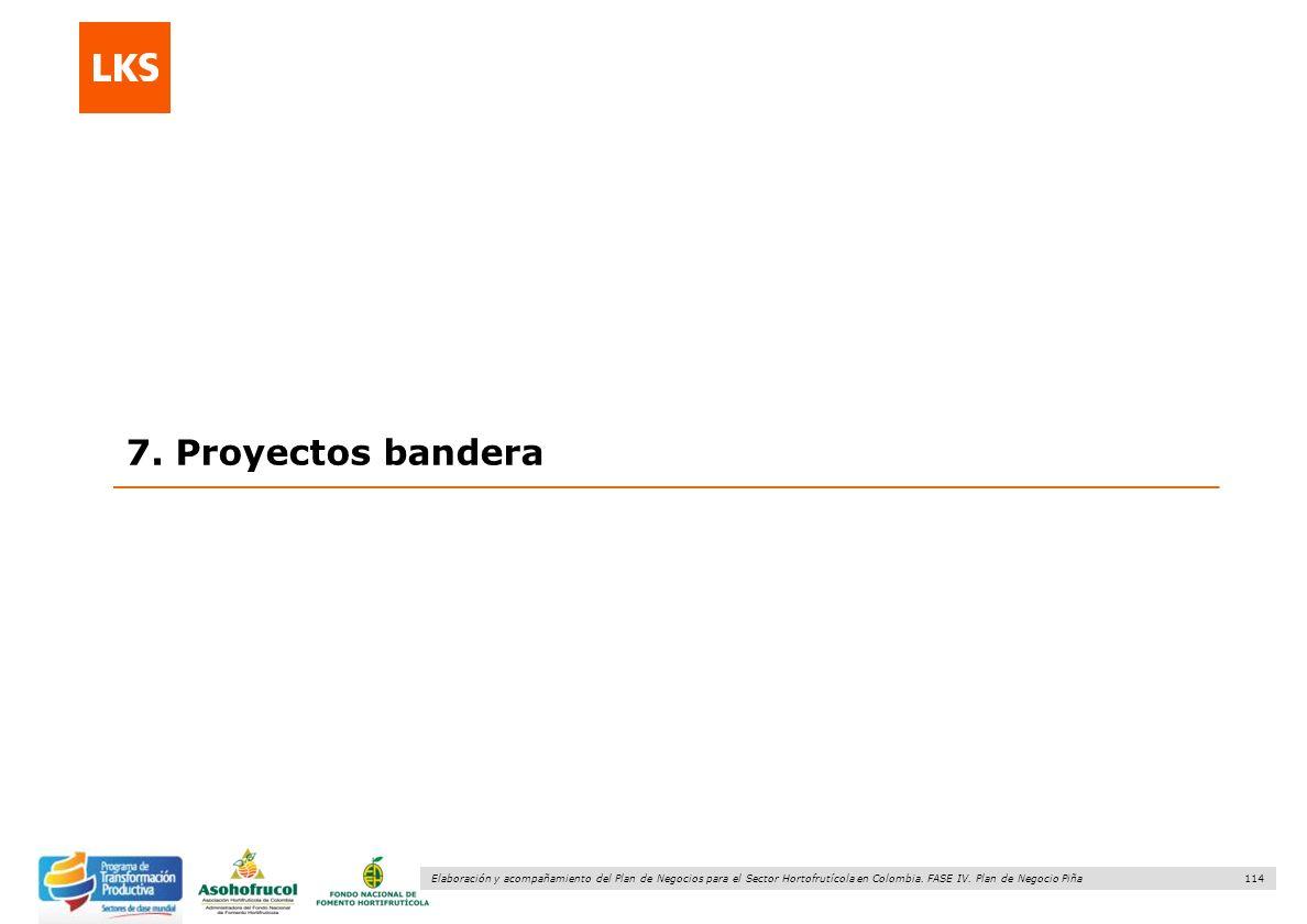 114 Elaboración y acompañamiento del Plan de Negocios para el Sector Hortofrutícola en Colombia. FASE IV. Plan de Negocio Piña 7. Proyectos bandera
