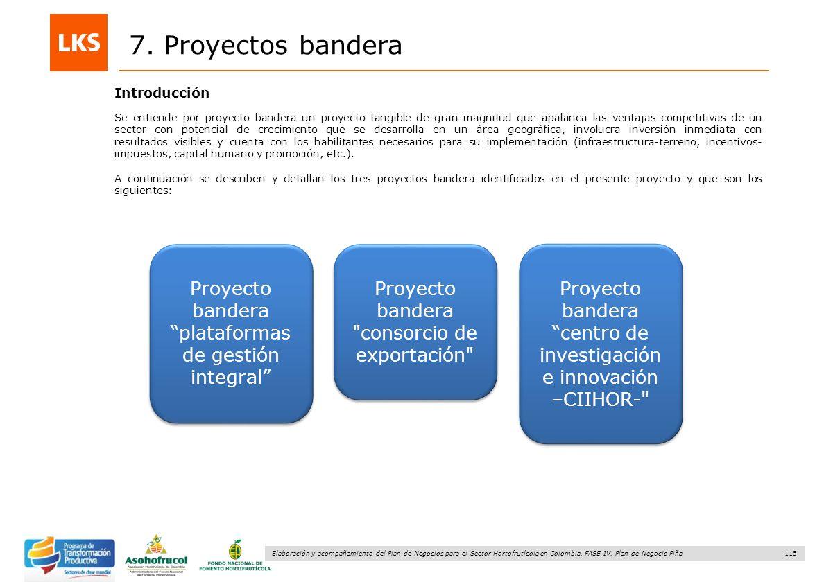 115 Elaboración y acompañamiento del Plan de Negocios para el Sector Hortofrutícola en Colombia. FASE IV. Plan de Negocio Piña 7. Proyectos bandera Se