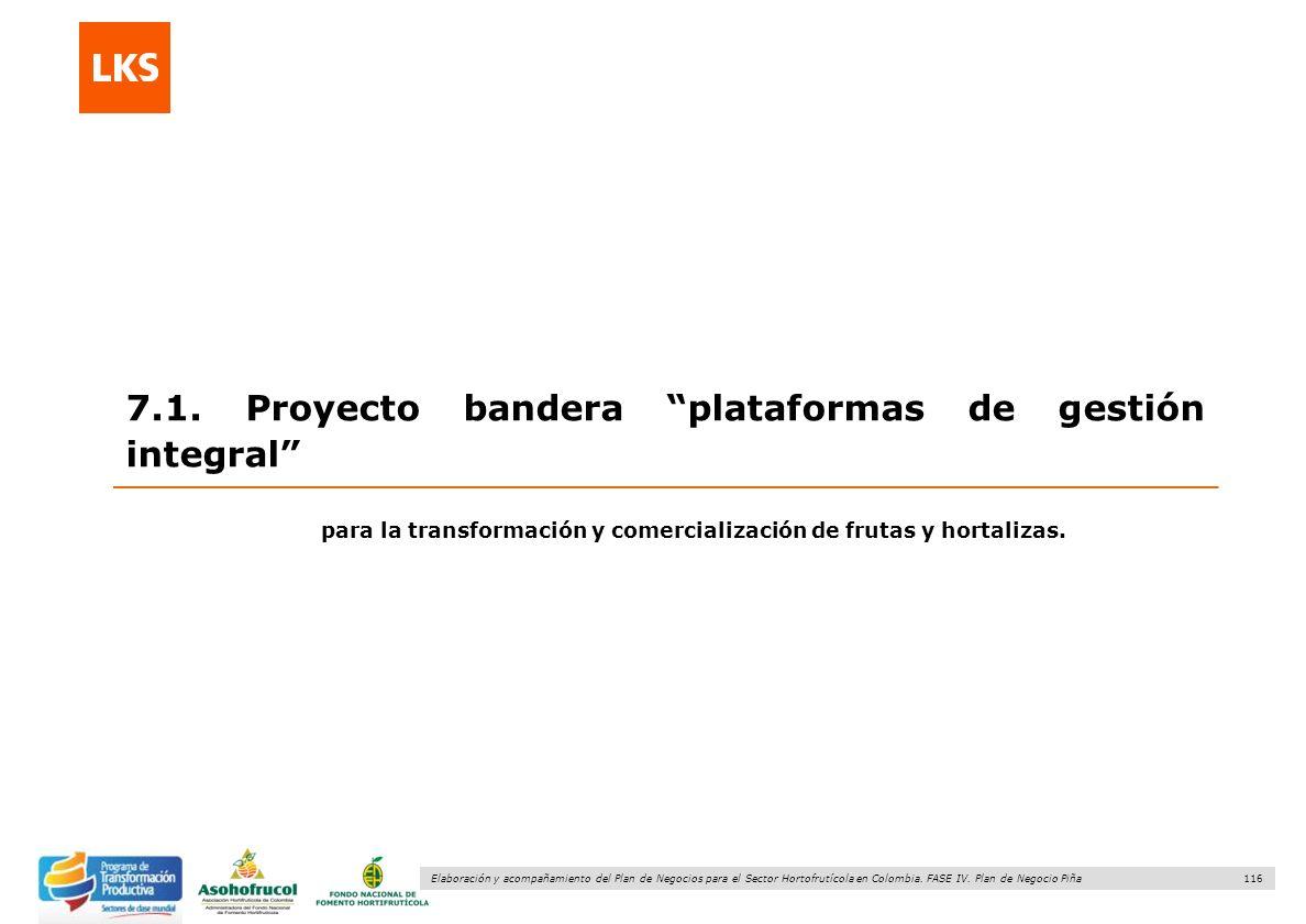 116 Elaboración y acompañamiento del Plan de Negocios para el Sector Hortofrutícola en Colombia. FASE IV. Plan de Negocio Piña 7.1. Proyecto bandera p