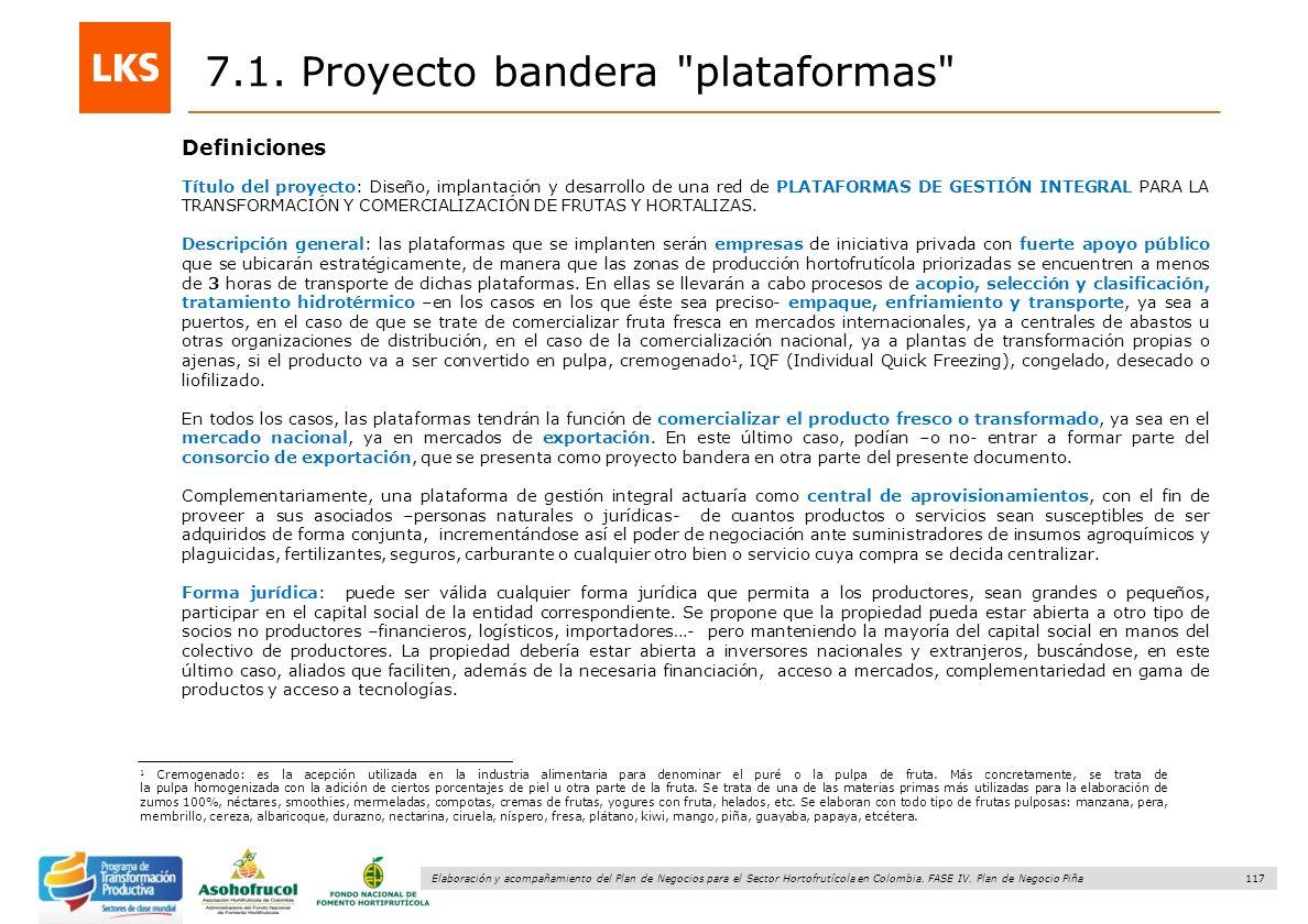 117 Elaboración y acompañamiento del Plan de Negocios para el Sector Hortofrutícola en Colombia. FASE IV. Plan de Negocio Piña 7.1. Proyecto bandera
