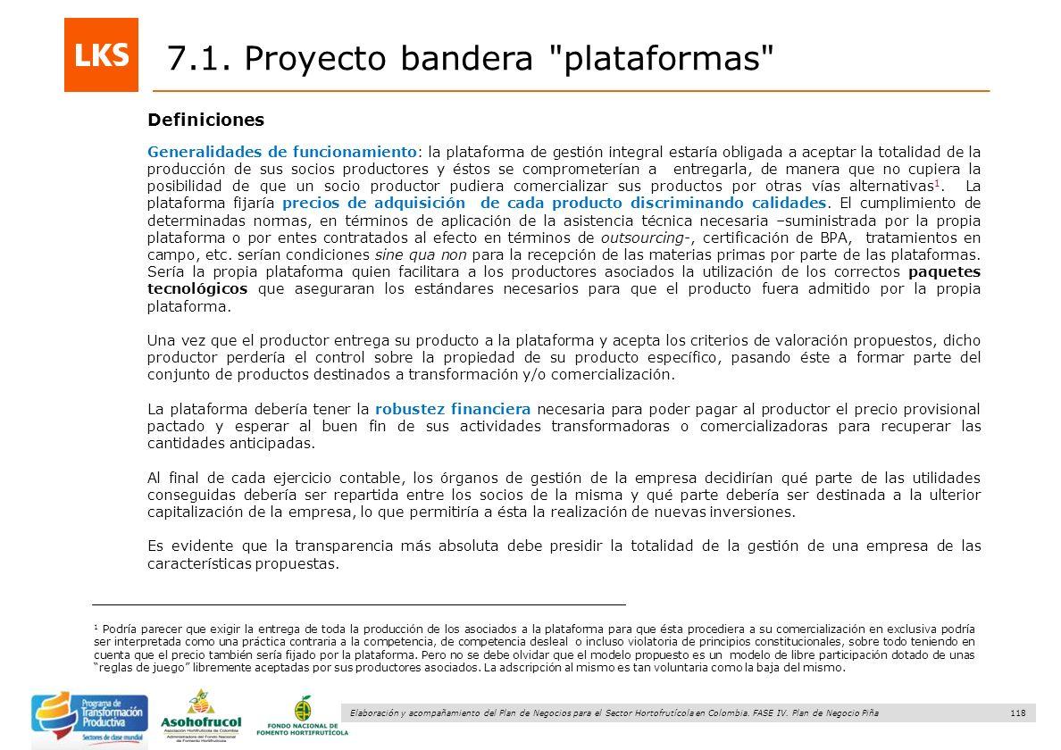 118 Elaboración y acompañamiento del Plan de Negocios para el Sector Hortofrutícola en Colombia. FASE IV. Plan de Negocio Piña 7.1. Proyecto bandera