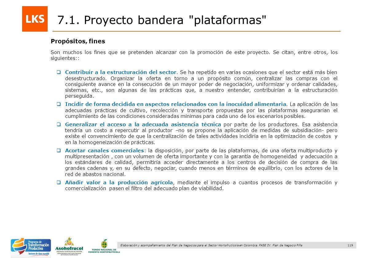 119 Elaboración y acompañamiento del Plan de Negocios para el Sector Hortofrutícola en Colombia. FASE IV. Plan de Negocio Piña 7.1. Proyecto bandera