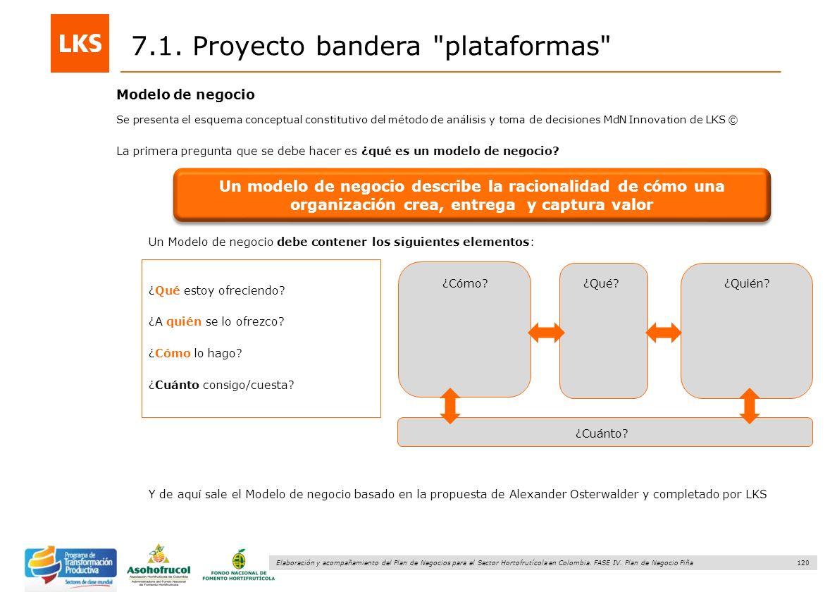 120 Elaboración y acompañamiento del Plan de Negocios para el Sector Hortofrutícola en Colombia. FASE IV. Plan de Negocio Piña 7.1. Proyecto bandera