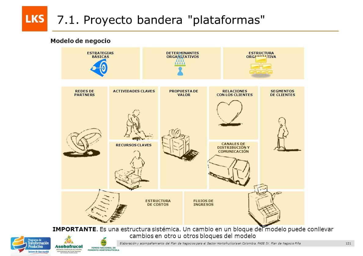 121 Elaboración y acompañamiento del Plan de Negocios para el Sector Hortofrutícola en Colombia. FASE IV. Plan de Negocio Piña 7.1. Proyecto bandera