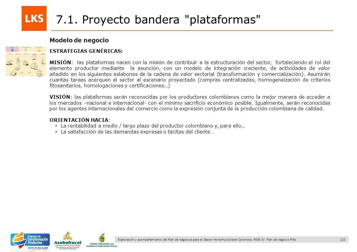 122 Elaboración y acompañamiento del Plan de Negocios para el Sector Hortofrutícola en Colombia. FASE IV. Plan de Negocio Piña 7.1. Proyecto bandera