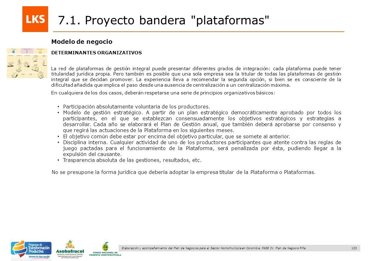 123 Elaboración y acompañamiento del Plan de Negocios para el Sector Hortofrutícola en Colombia. FASE IV. Plan de Negocio Piña 7.1. Proyecto bandera