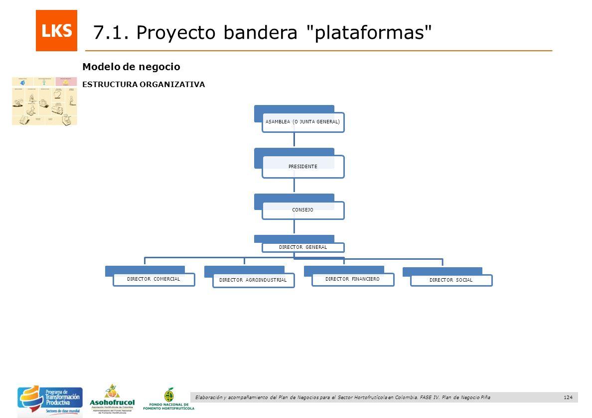 124 Elaboración y acompañamiento del Plan de Negocios para el Sector Hortofrutícola en Colombia. FASE IV. Plan de Negocio Piña 7.1. Proyecto bandera