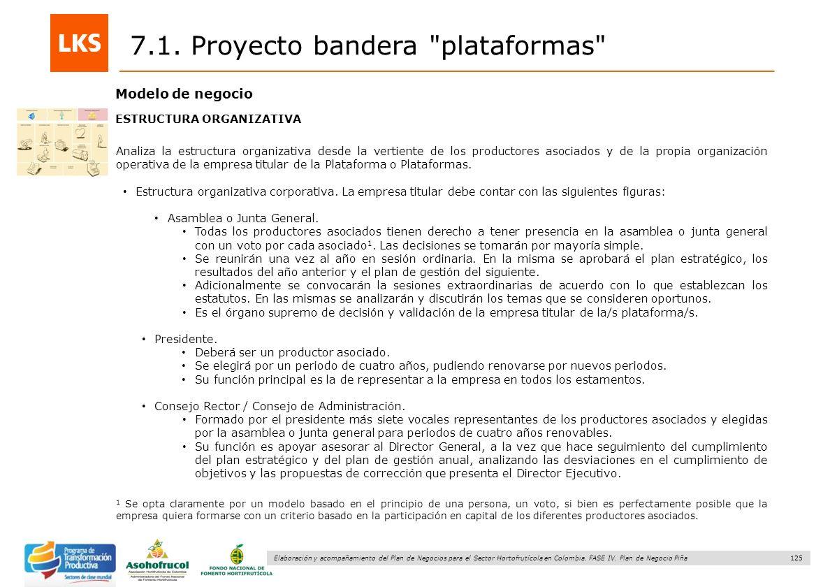 125 Elaboración y acompañamiento del Plan de Negocios para el Sector Hortofrutícola en Colombia. FASE IV. Plan de Negocio Piña 7.1. Proyecto bandera