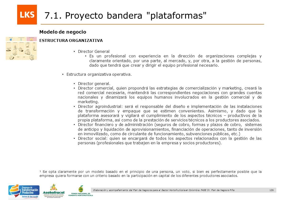 126 Elaboración y acompañamiento del Plan de Negocios para el Sector Hortofrutícola en Colombia. FASE IV. Plan de Negocio Piña 7.1. Proyecto bandera
