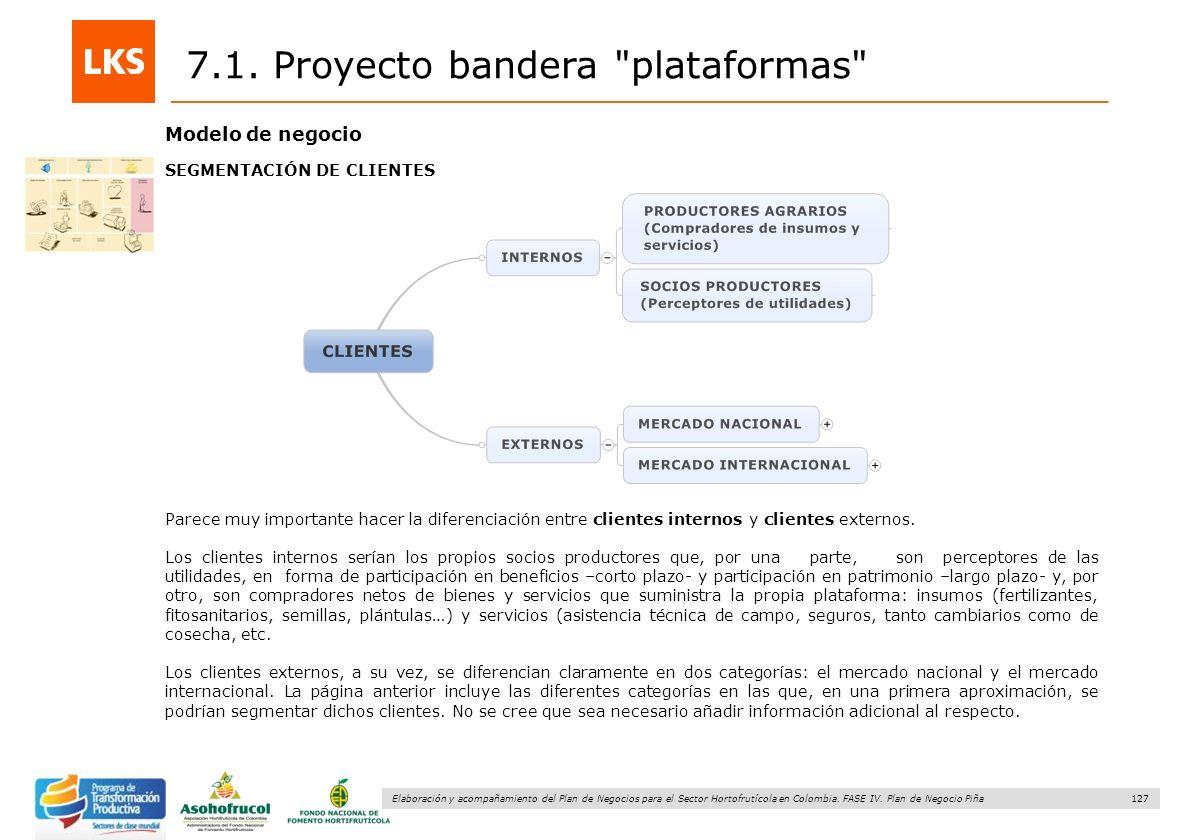127 Elaboración y acompañamiento del Plan de Negocios para el Sector Hortofrutícola en Colombia. FASE IV. Plan de Negocio Piña 7.1. Proyecto bandera