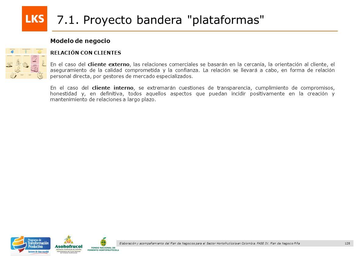 128 Elaboración y acompañamiento del Plan de Negocios para el Sector Hortofrutícola en Colombia. FASE IV. Plan de Negocio Piña 7.1. Proyecto bandera
