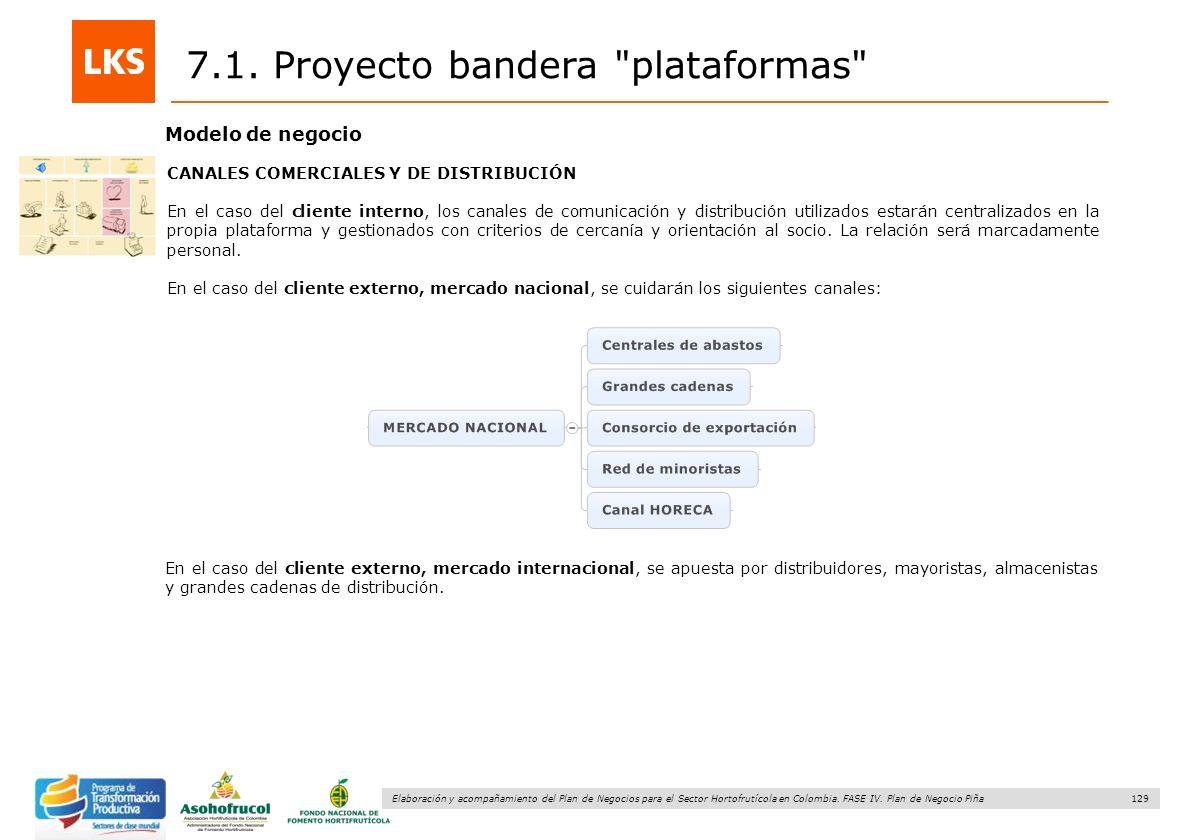 129 Elaboración y acompañamiento del Plan de Negocios para el Sector Hortofrutícola en Colombia. FASE IV. Plan de Negocio Piña 7.1. Proyecto bandera