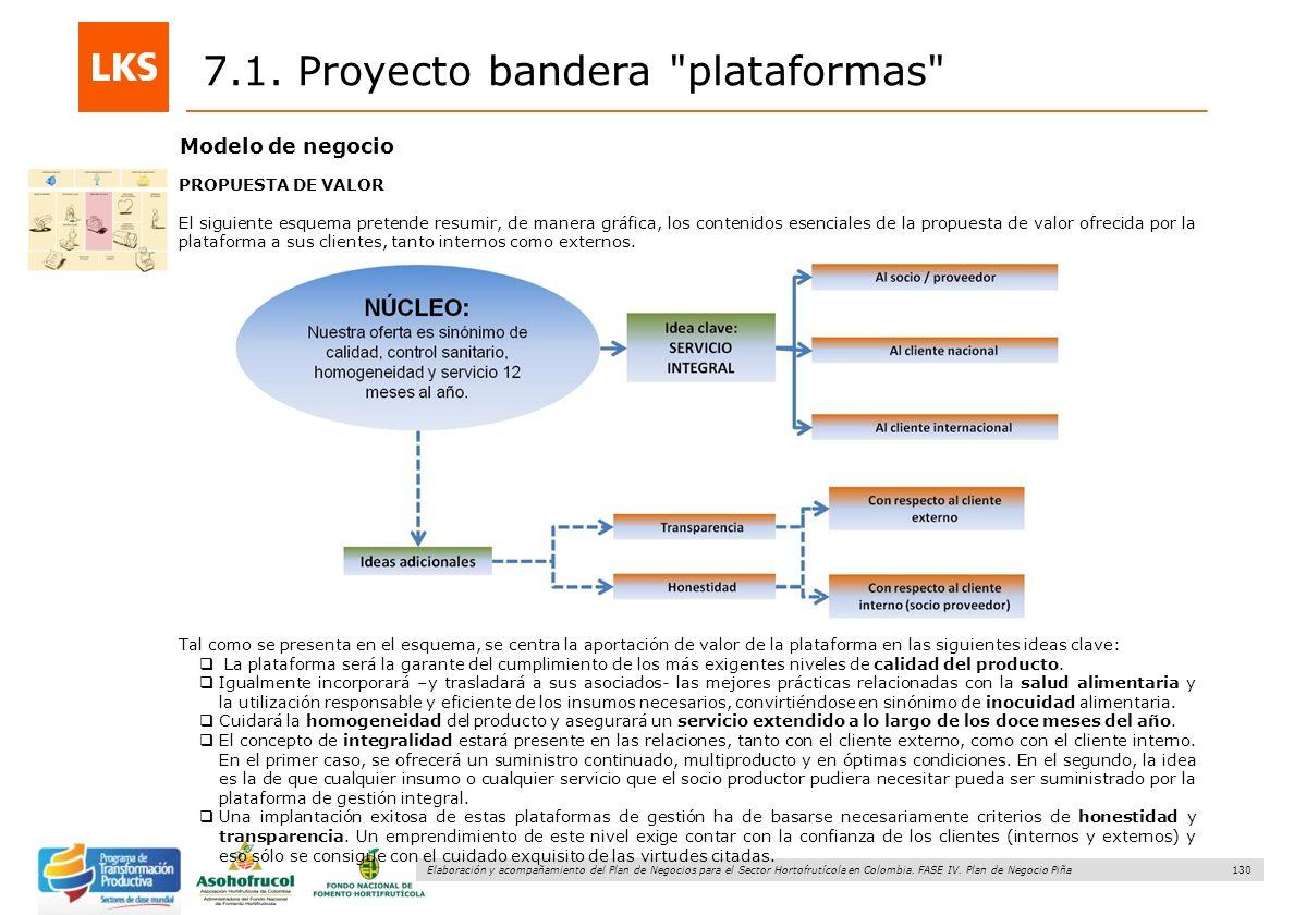 130 Elaboración y acompañamiento del Plan de Negocios para el Sector Hortofrutícola en Colombia. FASE IV. Plan de Negocio Piña 7.1. Proyecto bandera