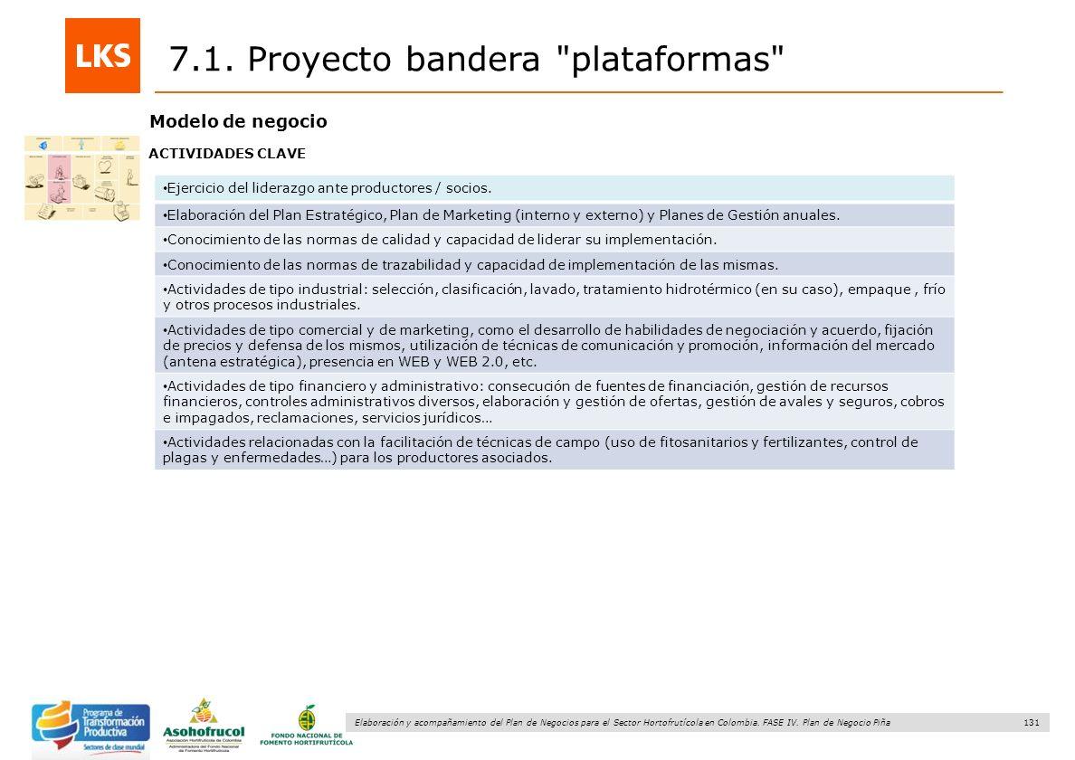 131 Elaboración y acompañamiento del Plan de Negocios para el Sector Hortofrutícola en Colombia. FASE IV. Plan de Negocio Piña 7.1. Proyecto bandera