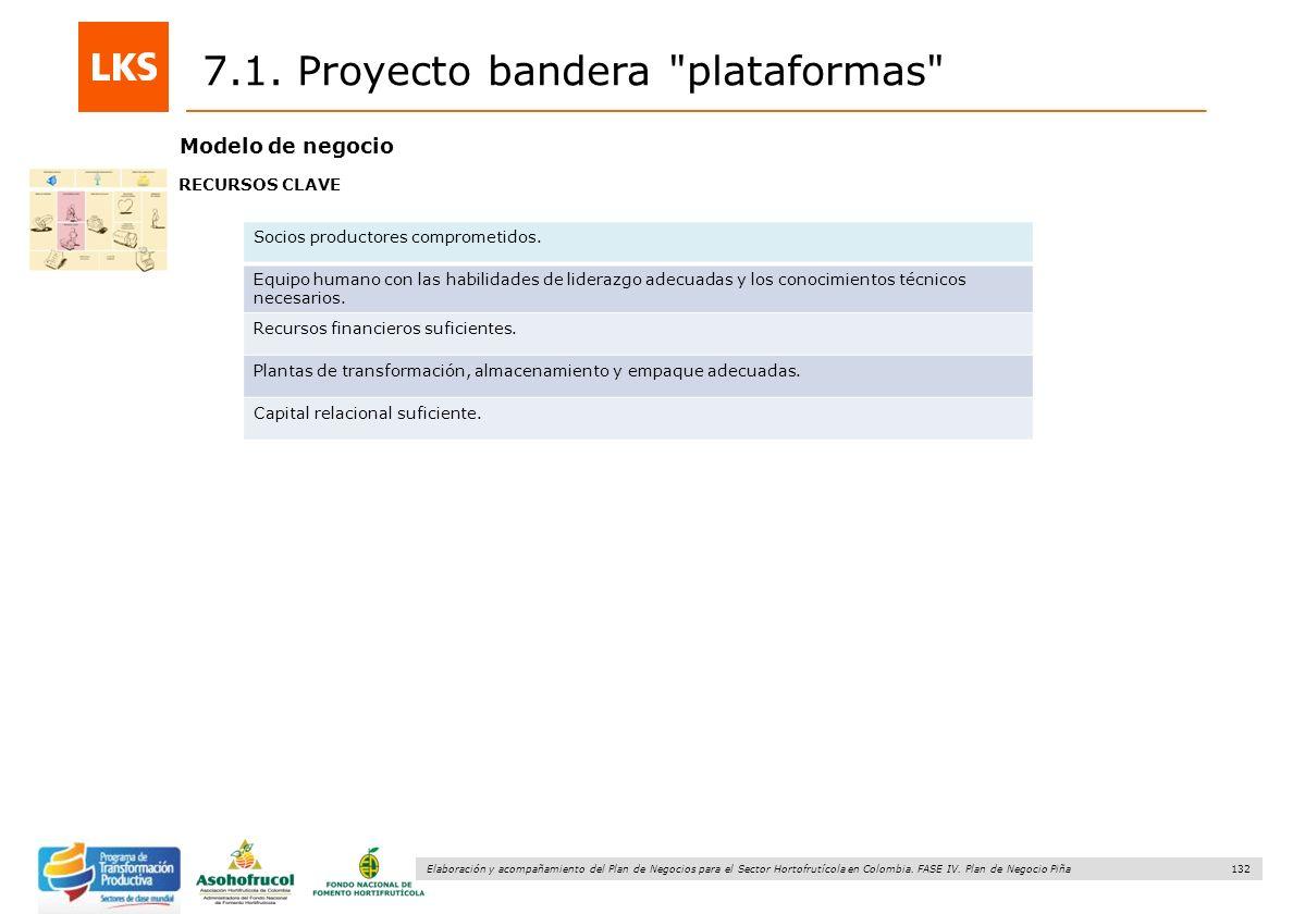 132 Elaboración y acompañamiento del Plan de Negocios para el Sector Hortofrutícola en Colombia. FASE IV. Plan de Negocio Piña 7.1. Proyecto bandera