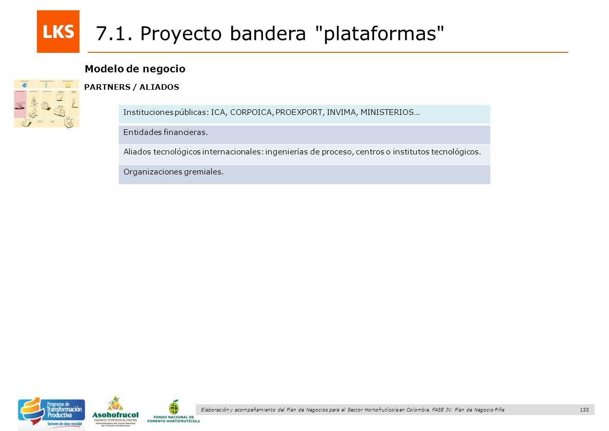 133 Elaboración y acompañamiento del Plan de Negocios para el Sector Hortofrutícola en Colombia. FASE IV. Plan de Negocio Piña 7.1. Proyecto bandera